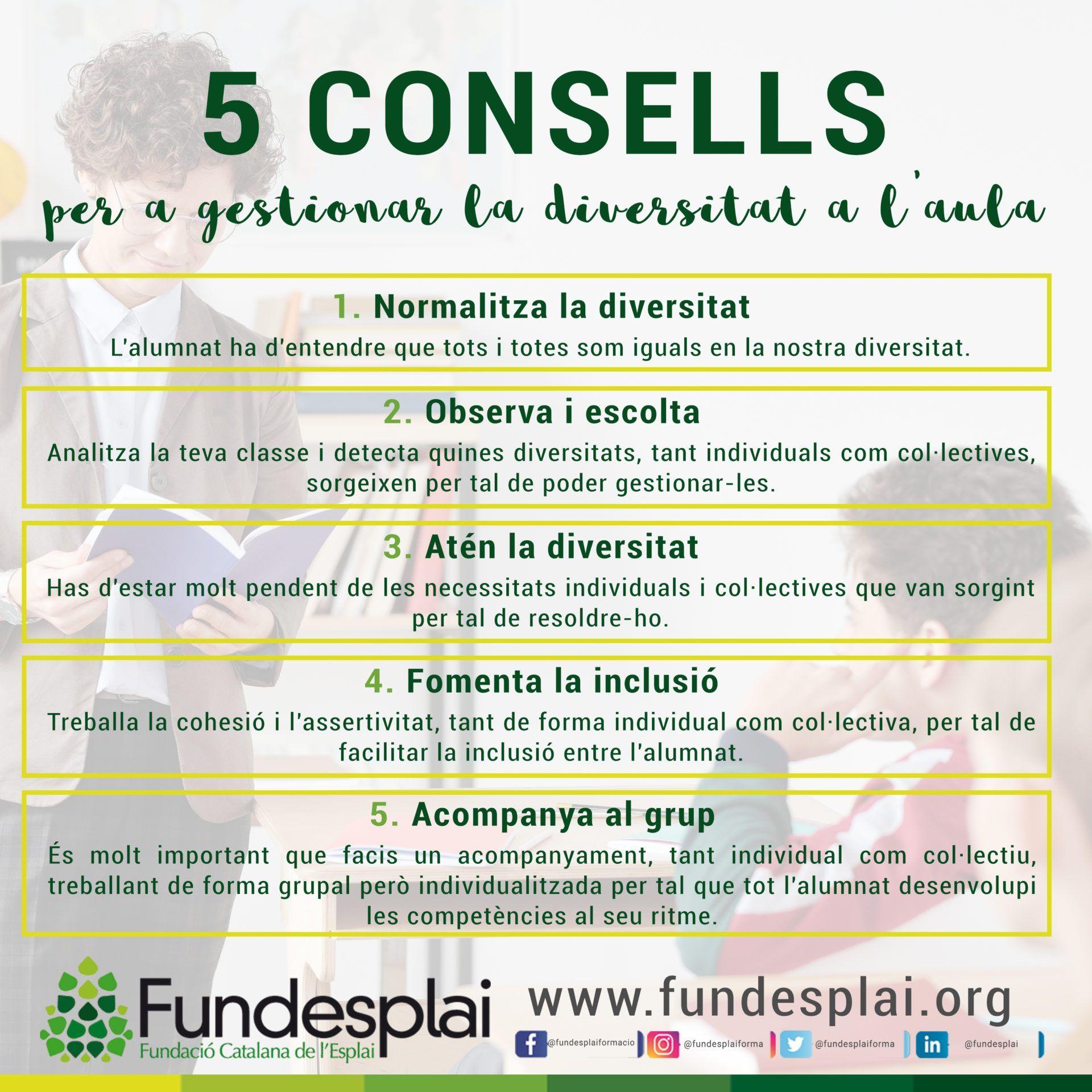 5 consells per a gestionar la diversitat a l'aula Fundesplai