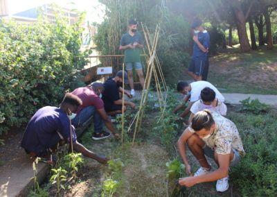 projecte hort sostenible fundesplai